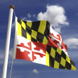 Stock Photo: Maryland Flag