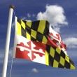 Maryland Flag — Stock Photo #27442207