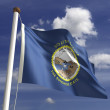 South Dakota Flag — Stock Photo