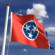 Tennessee Flag — Stock Photo