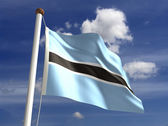 Botswana Flag — Stock Photo