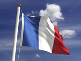 French Guiana Flag — Stock Photo