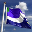 Sacramento City Flag — Stock Photo