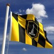 Baltimore City Flag — Stock Photo #31898643