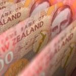 New Zealand Dollar Closeup — Stock Photo