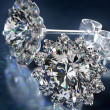 Diamond Earrings — Stockfoto