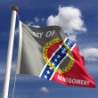 Stock Photo: Montgomery City Flag