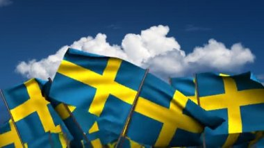Waving Swedish Flags — Stock Video