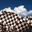 Waving Chequered Flags — Stock Video #38117865