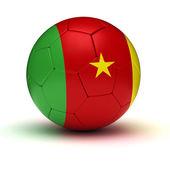 Futebol camaronês — Fotografia Stock