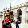 Changing of the Guard in Royal Palace at Madrid — Stock Photo