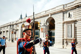 Changing of the Guard in Royal Palace at Madrid — Stok fotoğraf