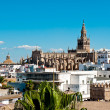 Seville Cathedral — Foto Stock