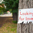 Stock Photo: Looking for love