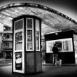 Kiosk and dog — Stock Photo