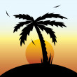 Vector illustration of a tropical sunset and palm tree. — Stock Vector