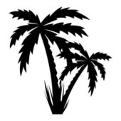 Vector illustration of palm trees . — Vector de stock