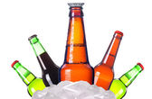 Isolated Frosty beer set with kings bottle of beer — Stock Photo