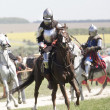 Medieval knights in battle — Stock Photo #25478683