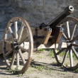 Old medieval artillery canon — Stock Photo