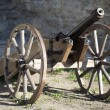 Stock Photo: Old medieval artillery canon