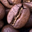 Coffee background — Stock Photo #25996803