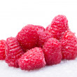 A beautiful selection of raspberries — Stock Photo