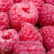 A beautiful selection of raspberries — Stock Photo #26253085