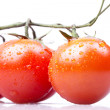 Cherry tomatoes on white background - Zdjęcie stockowe
