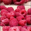 A beautiful selection of raspberries — Stock Photo #26535477