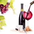 Red wine assortment of grapes and cheese — Stock Photo #27011857
