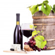 Red wine assortment of grapes and cheese — Stock Photo