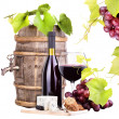 Red wine assortment of grapes and cheese — Stock fotografie