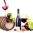 Red wine assortment of grapes and cheese — Stockfoto