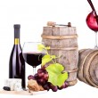 Red wine assortment of grapes and cheese — Photo