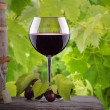 Grapes and wine glass on a wooden vintage table — Stock Photo