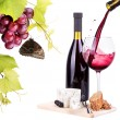 Stock Photo: Red wine assortment of grapes and cheese