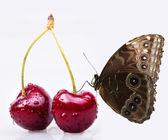 甜樱桃和蝴蝶的宏观背景 — 图库照片