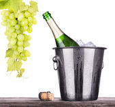 Bottle of champagne in ice bucket — Stock Photo