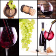 Red and white wine with champagne collage — Stock Photo