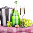 Picnic with champagne and food — Stock Photo