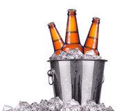 Beer bottles in ice bucket isolated — Stock Photo