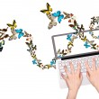 Butterfly flying out from computer — Stock Photo
