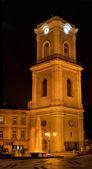 Torre de polonia — Foto de Stock
