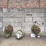 Auschwitz-Birkenau — Stock Photo
