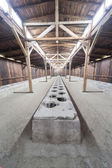 Toilets in the Auschwitz II-Birkenau — Stock Photo