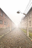 Electric fence in former Nazi camp — Stock Photo