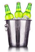 Beer bottles in ice bucket isolated — Stock Photo