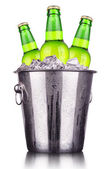 Beer bottles in ice bucket isolated — Stok fotoğraf