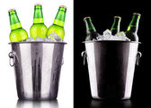 Beer bottles in ice bucket — Stok fotoğraf